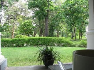 Tissawewa Rest House Dry Zone Garden