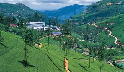 Nuwara Eliya, Sri Lanka Holidays