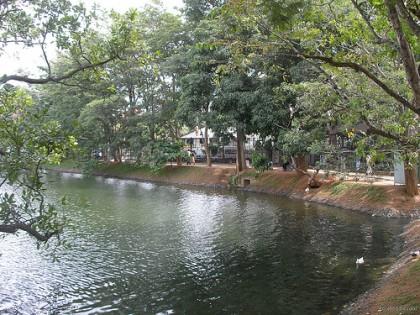 Nachchaduwa ancient reservoir