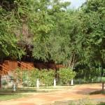 Green Paradise Hotel Dambulla Sri Lnka Holidays